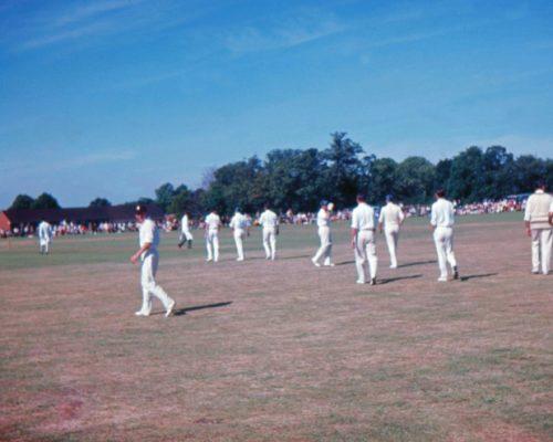 cricket1964_5
